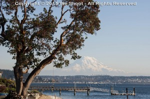 Seattle Commercial Photography
